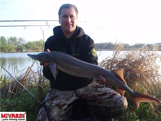 http://www.fish-pro.cz/images/articles/481/24630.jpg